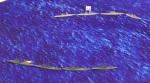 Seekrieg 5, 1/2400 scale WWI
